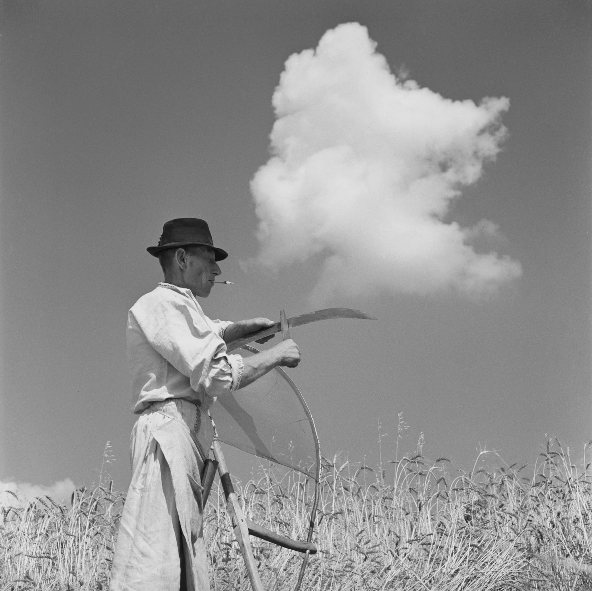 Výstava fotografií: Ferdinand Bučina – Letní retrospektiva