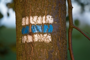 Značka na stromě 1